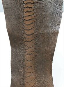 /%100 Genuine Ostrich Leather Ostrich Legs Skin Leather Distress Gold Color G.A