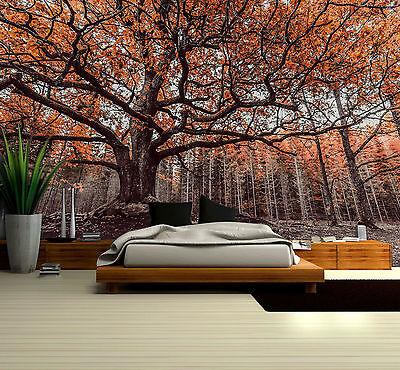 Prepasted Mural Wallpaper Wallcovering River Nature Scenery Home Decor BZ1281
