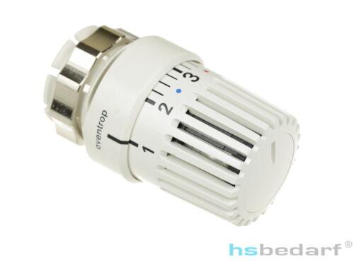 "Oventrop Thermostat /""Uni LDV/""  Alternativ Danfoss RAV 161 65 75"