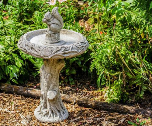 Squirrel Design Stone Cast Garden Bird Bath Including Delivery by DGS UK