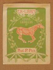 Ex-Libris Prof. P. Pich Art-Nouveau Espagne Cheval Vintage