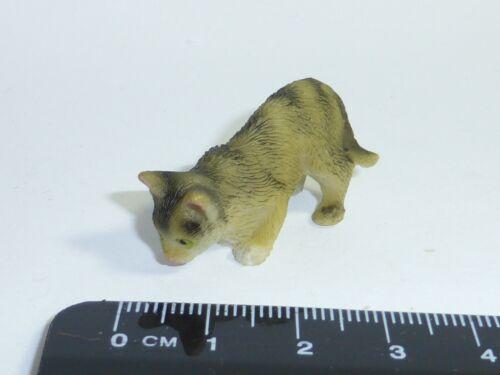 Gatti Animali Domestici Animali GATTO Tigrato SCALA 1:12th D Doll House in Miniatura
