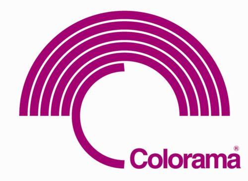 Colorama Colorgrad PVC Graduated Background 110 x 170 cm Light Grey//White