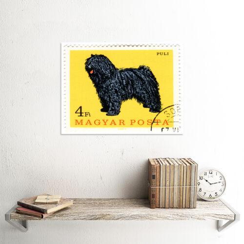 POSTAGE STAMP HUNGARY SHEEP DOG ART PRINT POSTER 30x40cm CC6759