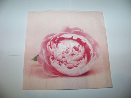 3  Servietten Rose Pfingstrose rosa Napkins