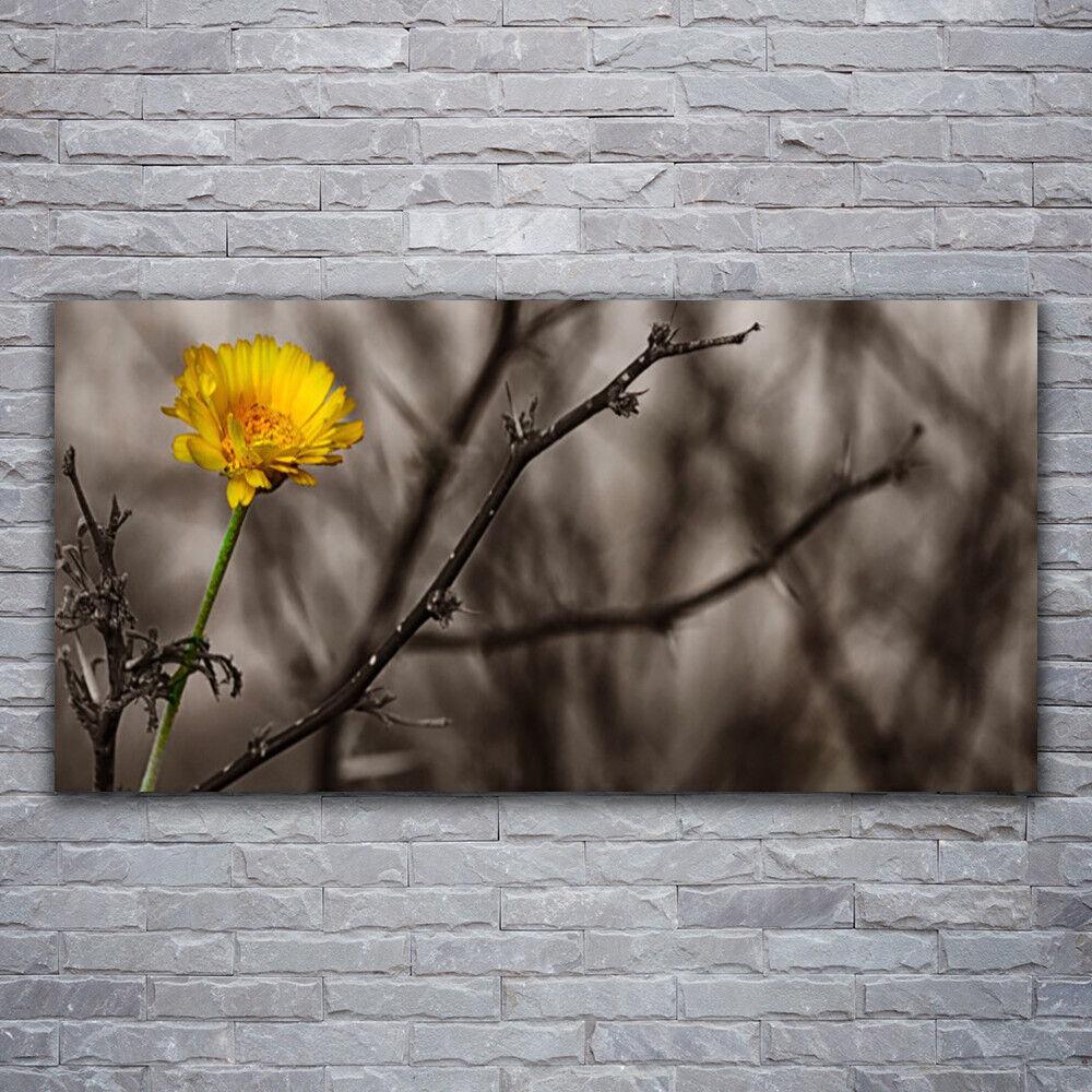 Impression sur verre Wall Art 120x60 Photo Image Branch Fleurs