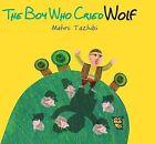 The Boy Who Cried Wolf by Tiny Owl Publishing Ltd (Hardback, 2015)