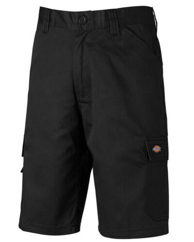 Dickies Everyday Shorts ED247SHS