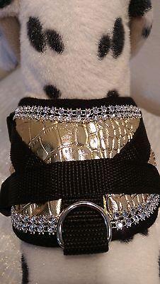 Softgeschirr Brustgeschirr Hundegeschirr Halsband Xs-m Welpen Gold Glitzer