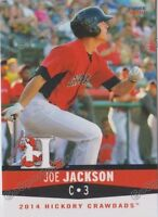 2014 Hickory Crawdads Team Set Texas Rangers Minor