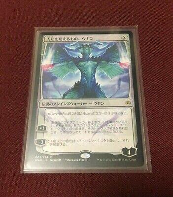 Le Seigneur des Anneaux jeu de cartes à collectionner REFLECTIONS FOIL envoyé Back 9R27 LP