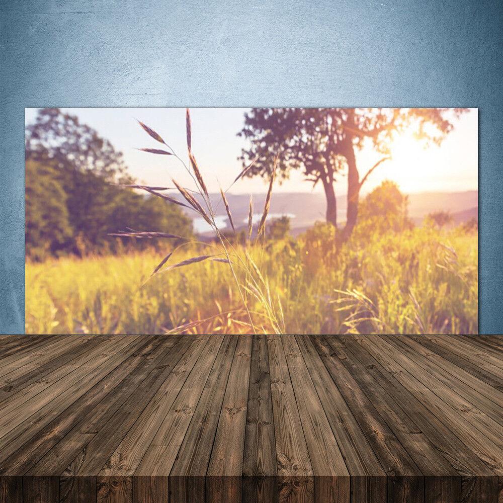 Crédence de cuisine en verre Panneau 140x70 Nature Prairie Herbe Arbre