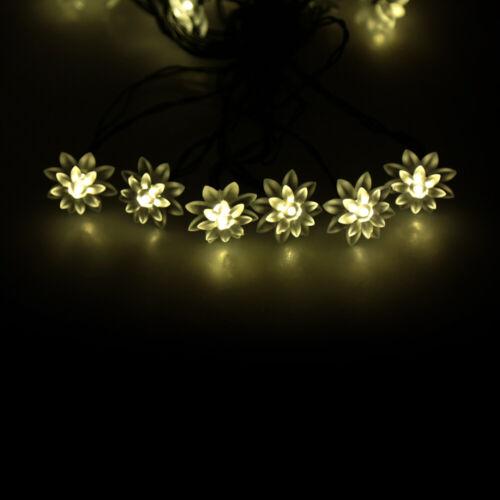 Solar LED Lichterkette 20LED Warm Weiß Lotus Flower Schnur Licht Lampen T9Q3