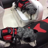 Crewsaver Pet Float Dog Cat Buoyancy Aid Lifejacket Coat For Animal Large