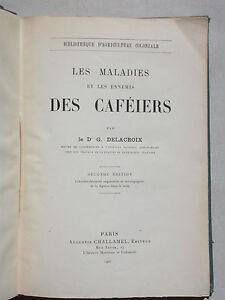 Les maladies et les ennemis des caféiers agriculture coloniale 1900 Delcaroix