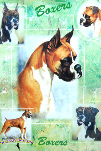 Boxer Gift Wrapping Paper