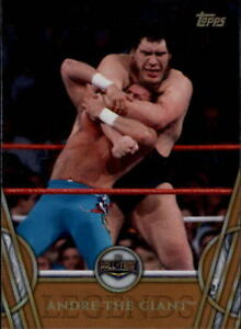2018-Topps-Legends-of-WWE-Wrestling-Bronze-Singles-Pick-Your-Cards