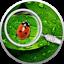 thumbnail 1 - 2020 Cameroon Secret Garden Ladybug 1/2 oz .999 Silver Proof Coin - Mintage 300