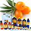 3ml-Essential-Oils-Many-Different-Oils-To-Choose-From-Buy-3-Get-1-Free thumbnail 87