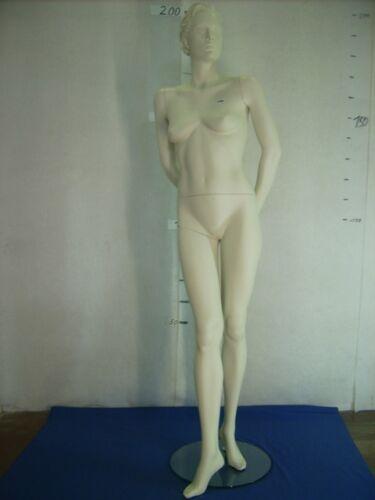 Mannequin Mannequin Doll Fashion Doll Standing Fem
