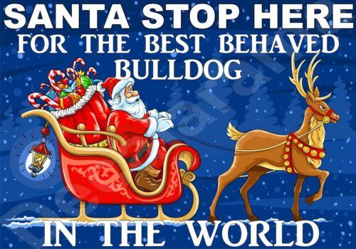 Novelty Laminated Gift Present BULLDOG Santa Sign STOP HERE FOR BEST BEHAVED