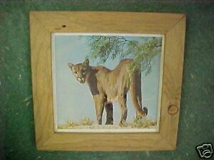 Details about Vintage Wood barn board picture frame cougar mtn lion