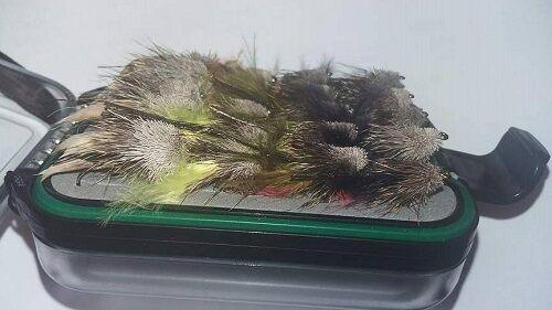 20 Gemischte Muddler Fischen Fliegen In eine wasserdichte Fliegen Box