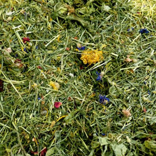 ASEAN hierba Tortuga Flor /& Planta Ropa de Cama alimentos 100g mezcla de ropa de cama Comestible