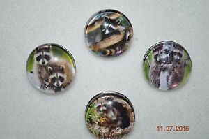 Snap-button-metal-charm-assorted-RACCOON-covers-for-snap-bracelets-18-19MM