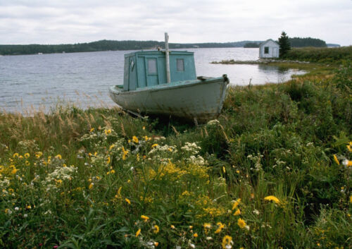 CANVAS Old Blue Boat on Beach of Wildflowers at Peggy/'s Cove Art print POSTER