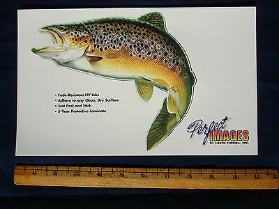 Brown Trout Fish Decal Sticker Al Agnew Ebay