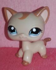authentic LPS 1024 LITTLEST PETSHOP chat EUROPEEN EUROPEAN cat kitty gato hasbro
