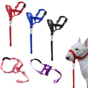 Mascota-Perro-Bozal-Halti-Estilo-Collar-De-Cabeza-Correas-perro-tirando-Halter-entrenamiento-Reina