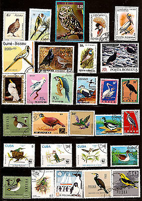 Topical Stamps Stamps All Species 1m209a Hard-Working All Countries Birds All Types