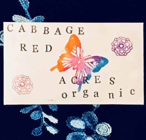 Organic Cabbage Red Acres Vegetable Seeds Packet ONE HALF GRAM Purple 2019 USA