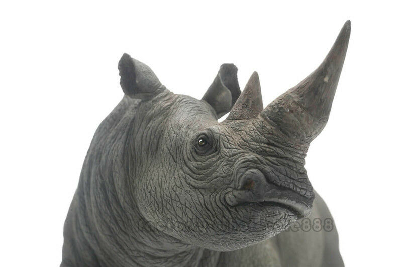 2019 White Rhinoceros Wildlife Scientific Realistic Large Model Model Model Figure Pnso Gift 438a68