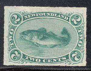 NFLD 1879 2c Green Codfish, Scott 38, VF unused, catalogue - $300