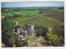 CPSM 33550 LANGOIRAN Château le vieux au pied du château Edt COMBIER