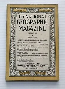 National-Geographic-Magazine-August-1926-The-Life-Of-A-Moon-Jellyfish