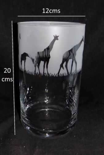 "New Medium /""GIRAFFE/""  Etched Cylinder Vase Lovely /& Unique Gift"
