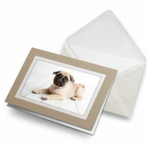 Greetings-Card-Biege-Pug-Puppy-Cute-Baby-Animal-Dog-24075
