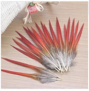 Wholesale-10-100pcs-magnifique-Faisan-Dore-Plumes-6-12-pouces-15-30-Cm