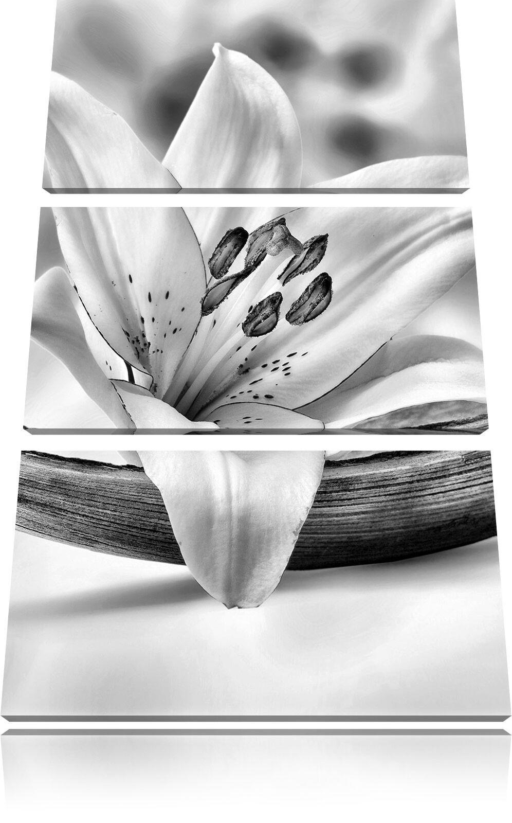 Bella Gigli Fiore Legno 3-Teiler Quadro su Tel Decorazione Parete Stampa