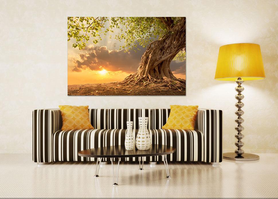 3D Dunkle Wolken Sonne Baum 90  Fototapeten Wandbild BildTapete AJSTORE DE Lemon