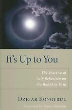 Buddhism: It's up to You : The Practice of Self-Reflection on the Buddhist...