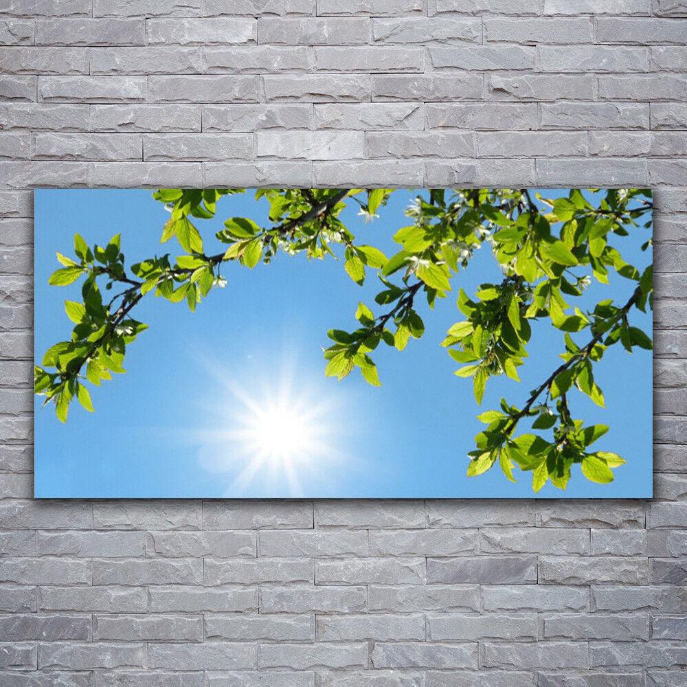 Verre Imprimer Wall Art Image 120x60 Photo Soleil Nature