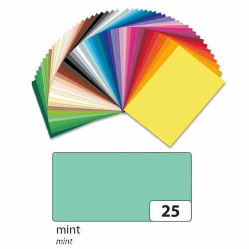 NEU Bastelkarton 220g//m² Mint,100 Blatt A4