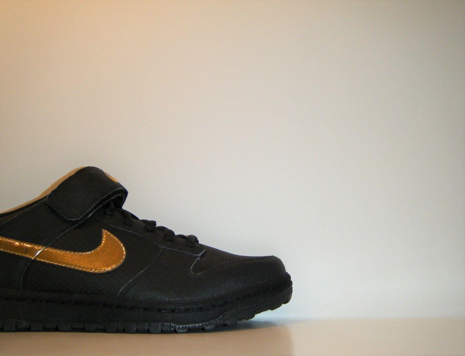 2008 Nike Dunk Low Gyrizo Beijing Olympic BMX QS Sz 11 SB Pro Cycling 330789-071