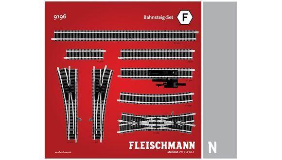 FLEISCHuomoN 9196 SET  F  BINARI SCALA N  1 160  contiene 20 pezzi  Ritorno di 10 giorni
