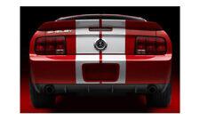 "2007-2009 Mustang Shelby GT500 Rear Spoiler, Fits 05-09 GT""s"